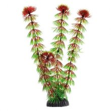Кабомба красная BARBUS Plant 033 20 см