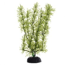 Яванский мох зеленый BARBUS Plant 024 20 см