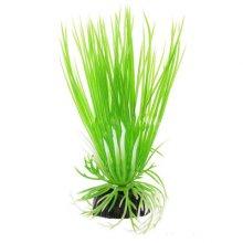 Акорус зеленый BARBUS Plant 007 10 см