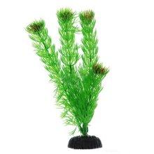 Амбулия зеленая BARBUS Plant 002 10 см