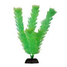 BARBUS Plant 055 10 см