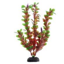 Людвигия ползучая красная BARBUS Plant 022 10 см